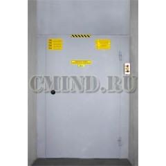 Грузовой подъемник CMInd-К2-250-900х1400х1600